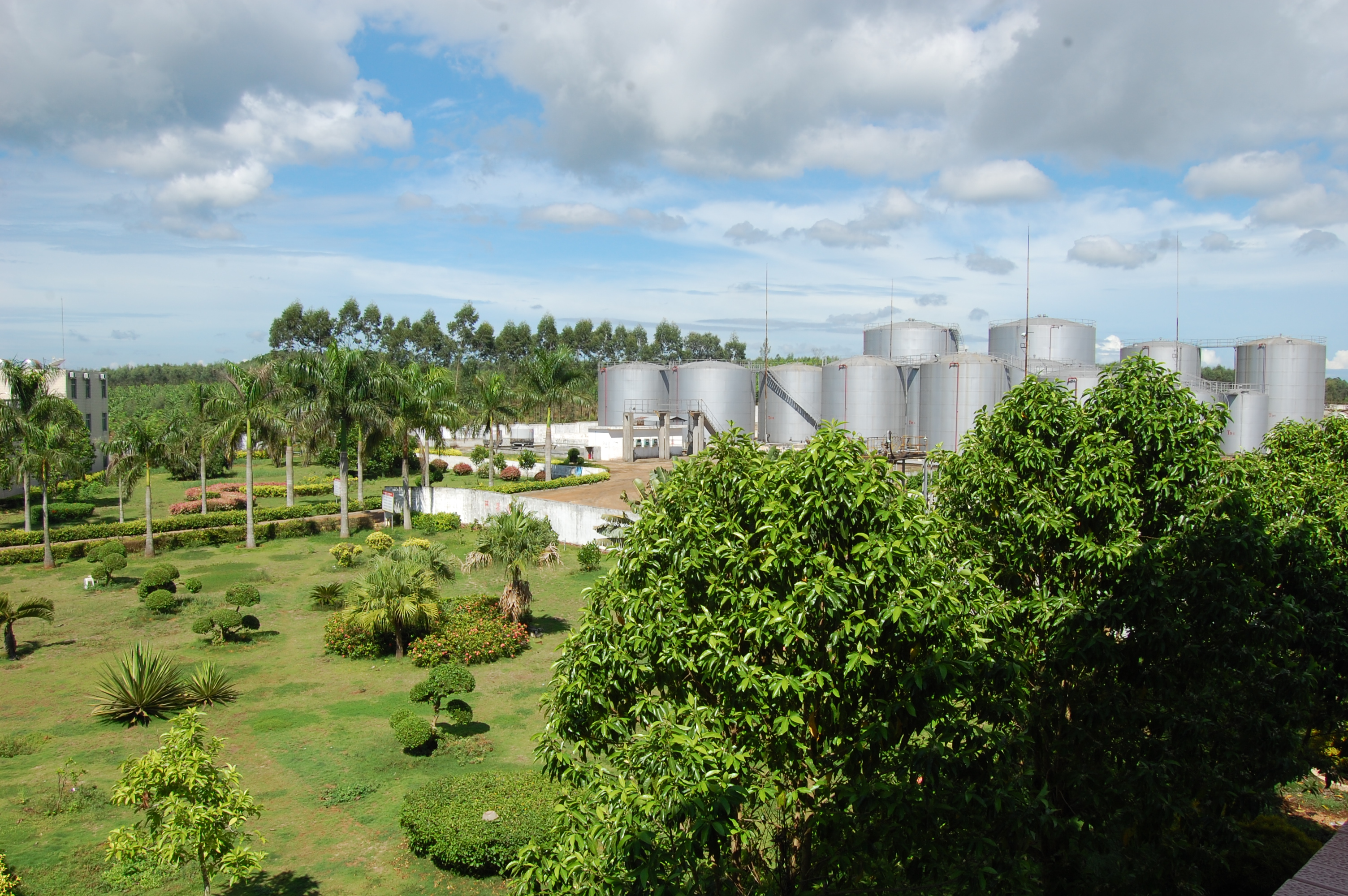 http://a.eqcdn.com/chinaintegratedenergyinc/files/pages/business-units/biodiesel-production-sales/potential-acquisition/pa3.jpg